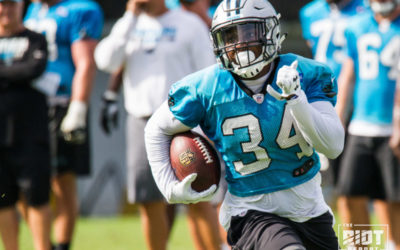 Can Cameron Artis-Payne Carry The Load?