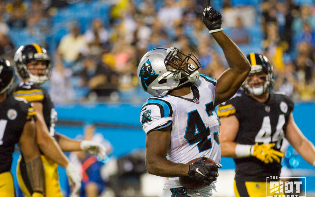 Carolina Panthers vs. Pittsburgh Steelers Preseason Week 4 Photo Gallery 235b58985