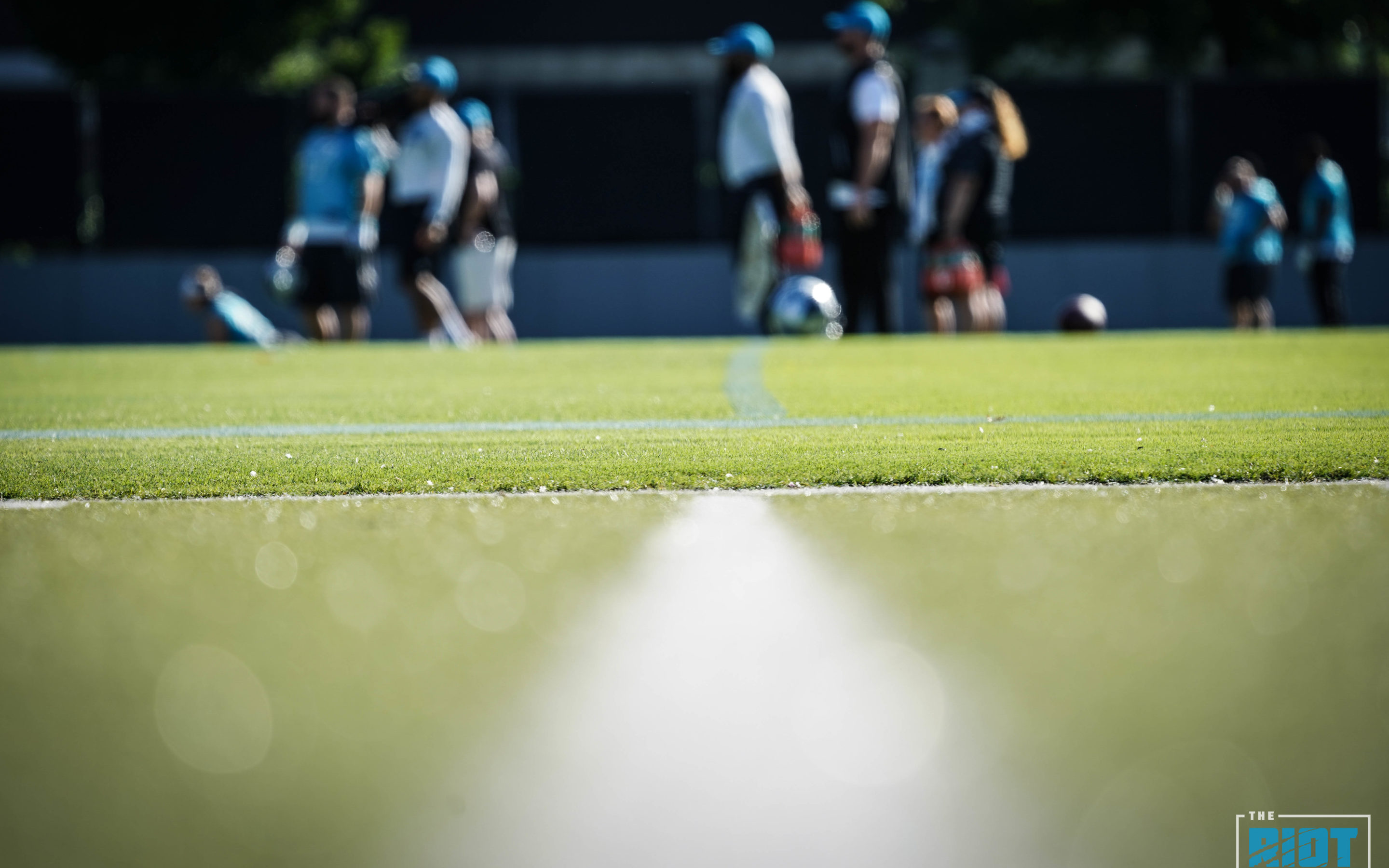 Panthers Mini-Camp Quick Hits