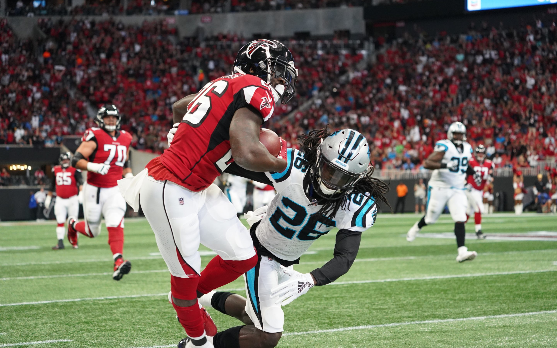 Carolina Panthers vs. Atlanta Falcons Report | The Riot Report