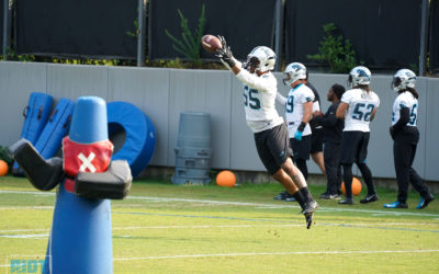 Dispatches From Panthers OTAs Week 3