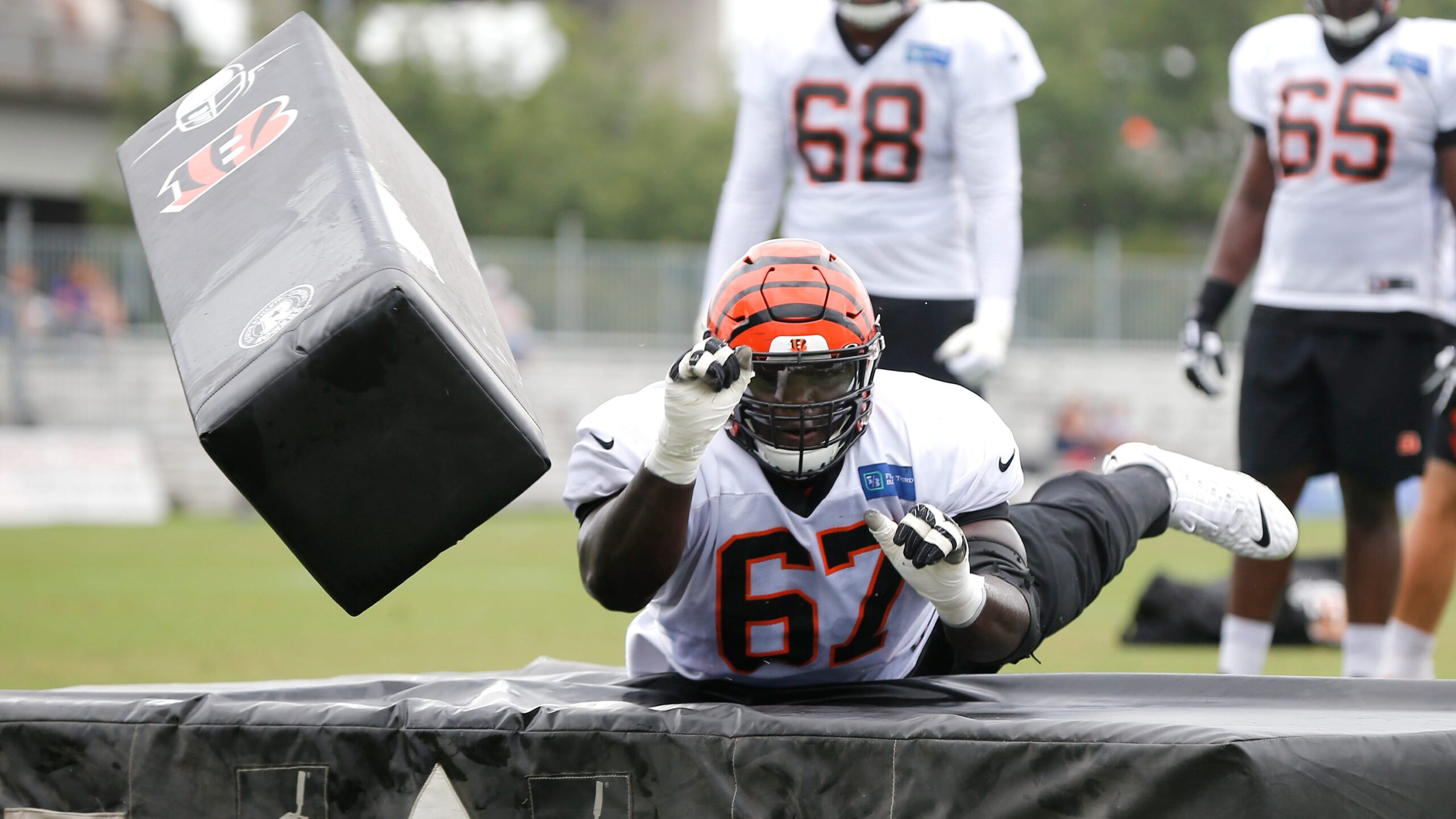 Panthers Add Guard To Replace Turner And Van Roten