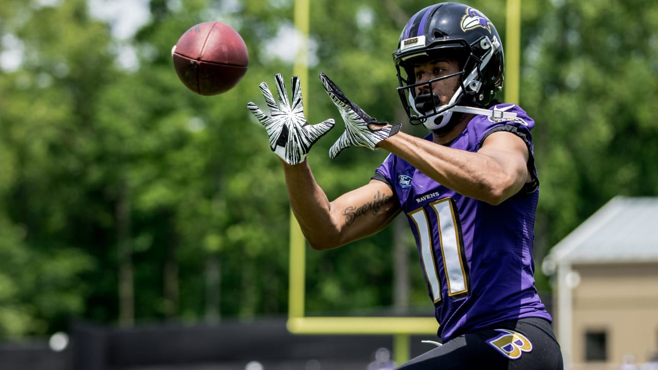 Panthers to Bring In WR Seth Roberts